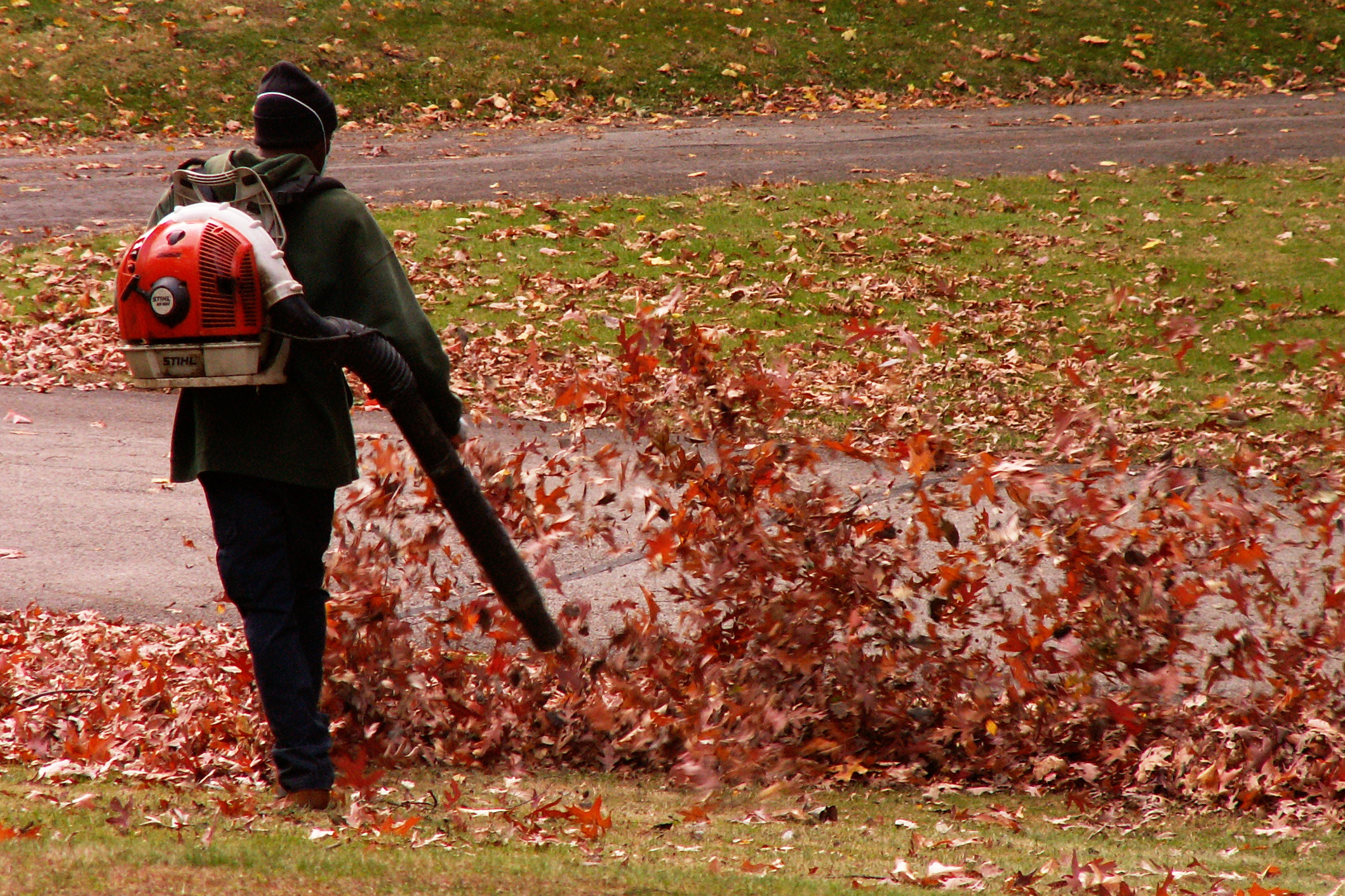 blowing off both wet and dry leafs
